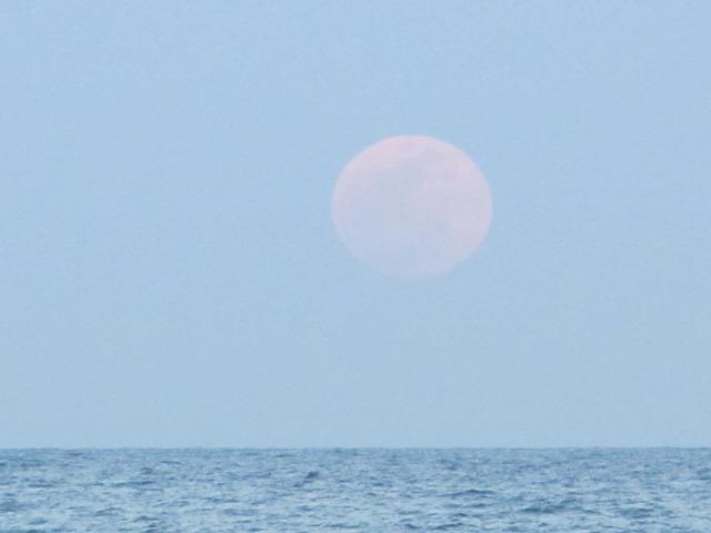 super_moon_2012-05-05_009