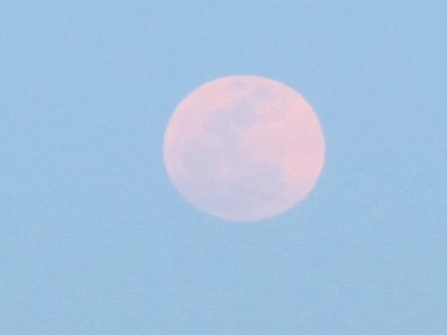 super_moon_2012-05-05_013