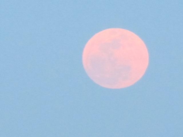 super_moon_2012-05-05_018