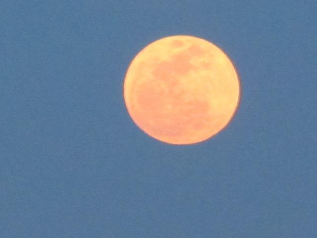 super_moon_2012-05-05_037