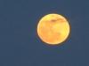 super_moon_2012-05-05_048