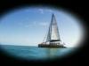 wild_hearts_sailingscope