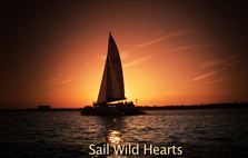 wild_hearts_sunset