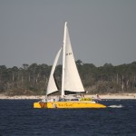 Wild Hearts Sailing Trips - Orange Beach